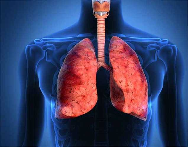 Ung thư phổi: Nguy cơ ung thư phổi có thể tăng đáng kể nếu bạn đang tiếp xúc với khói thuốc lá. Đây là một trong những nguy cơ nguy hiểm của việc hút thuốc thụ động.
