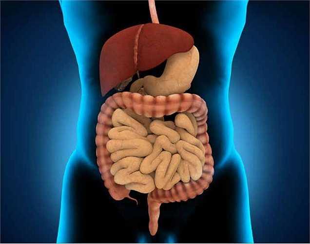 Rủi ro sức khỏe khác: Hút thuốc lá thụ động còn làm tăng nguy cơ bị các bệnh sau: ung thư vú, các vấn đề về đường hô hấp, ung thư cổ họng và các loại bệnh ung thư khác.