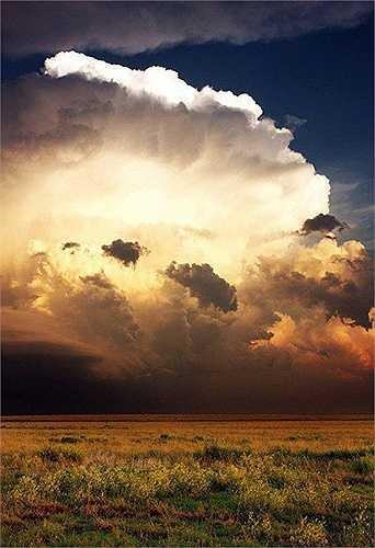 Việc đối diện với những cơn bão luôn là điều nguy hiểm. Nhưng đây là công việc đam mê của anh Blake và