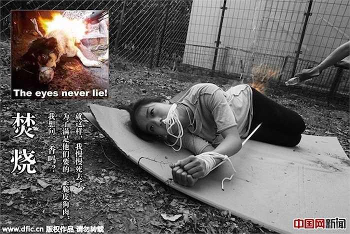 Với bộ ảnh này, những vũ công mong muốn thể hiện sự phản đối với việc ngược đãi động vật