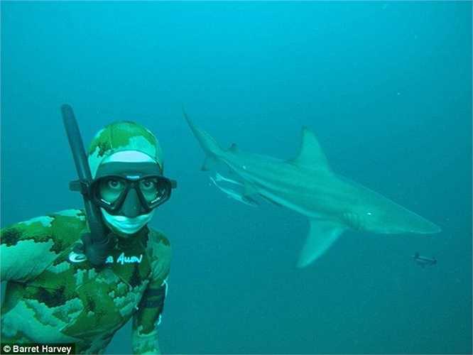 Cô thường xuyên phải đối mặt với những loài cá hung dữ, ví dụ như cá mập