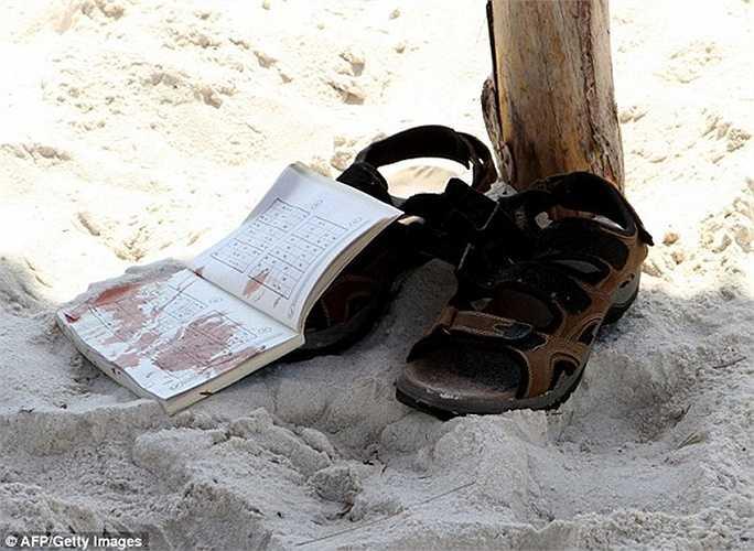 Một cuốn sách dính đầy máu trên bãi biển