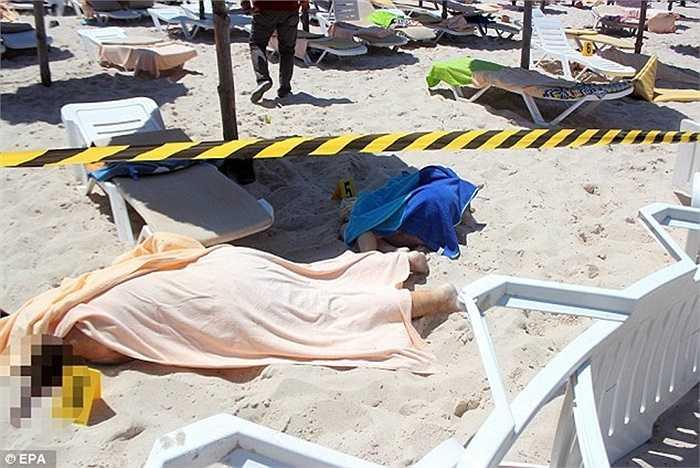 Nhiều du khách bỏ mạng ngay trên bãi biển