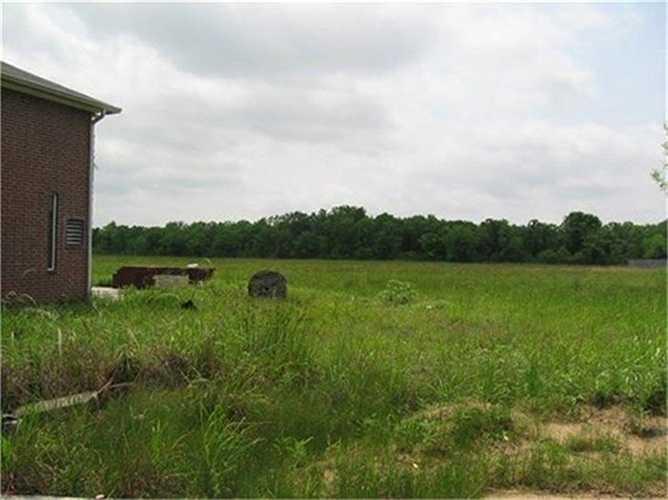 Sau nhiều năm bị bỏ hoang, cỏ xung quanh nhà mọc xanh um.