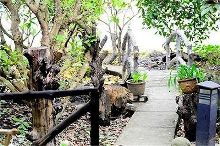 Lối đi có tay vịn làm bằng gỗ tự nhiên.