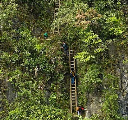 Những trẻ em ở làng Zhang Jiawan, miền Nam Trung Quốc phải trèo qua những chiếc thang gỗ đã cũ và không an toàn để đến trường. Có một con đường khác ít nguy hiểm hơn nhưng các em phải mất 4 giờ mới có thể đến trường
