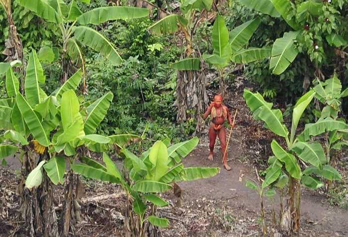 Trên đảo Sentinel có một bộ tộc bản địa vô cùng hung dữ. Bộ tộc này luôn thường trực cung nỏ trên vai và tấn công bất cứ con người, hay sinh vật lạ nào tiếp cận hòn đảo.