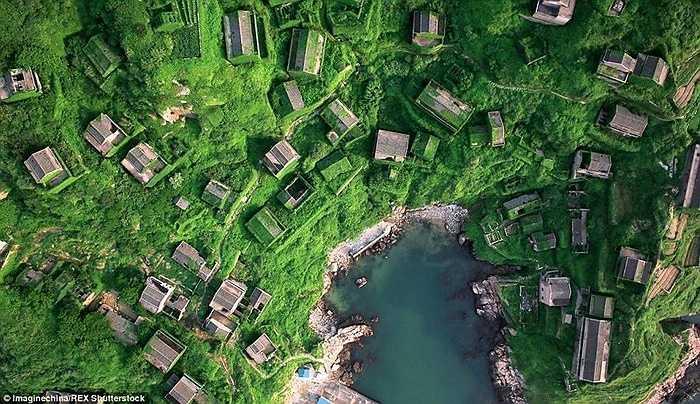 Ở Chiết Giang, đảo Cẩu Kỷ là thắng cảnh có một không hai. Trên đảo có ngôi làng đánh cá bỏ hoang, nay cây xanh mọc um tùm bao trùm lên các ngôi nhà