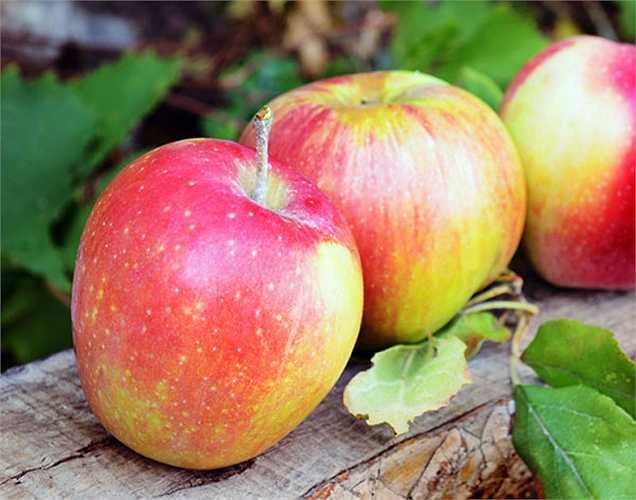 Táo: Là cách tự nhiên trị táo bón, bạn nên ăn táo thường xuyên. Chúng chứa pectin, giúp di chuyển phân đúng giờ.