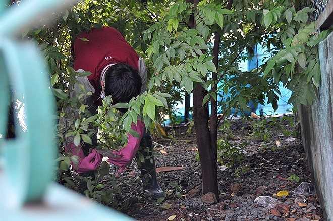 Vật có vỏ bọc màu vàng được công an tìm thấy trong túi rác ở ven quốc lộ 13, khu vực đối diện ngôi biệt thự nạn nhân Mỹ.
