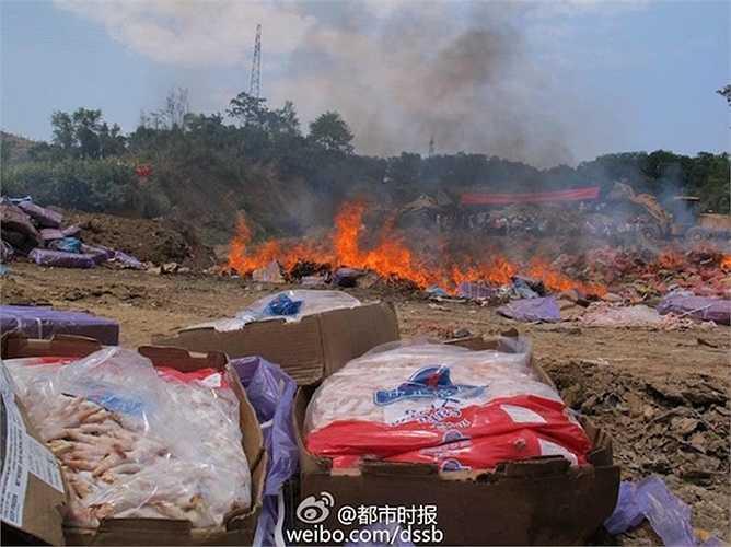 Thịt thối bị tiêu hủy bằng phương pháp đốt