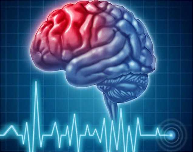 Tập thể dục thường xuyên tốt cho chất trắng có trong não. Các chất trắng là gì? Nó là các chùm dây thần kinh đóng một vai trò quan trọng trong việc truyền tải các tín hiệu não.