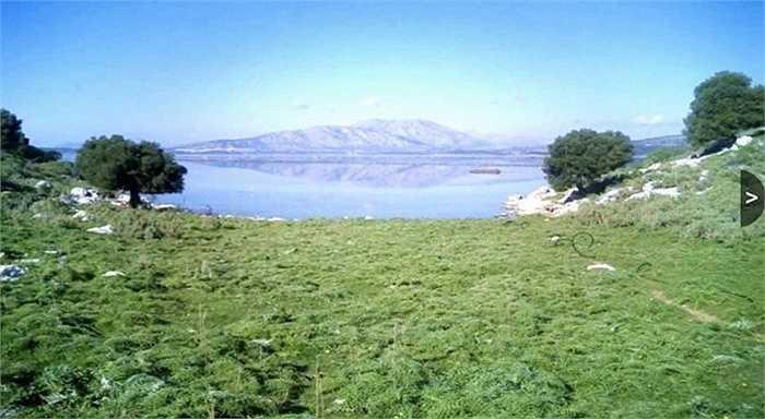 Đảo Dulichium - 44,1 triệu USD. Đây là hòn đảo tư nhân lớn nhất ở Hy Lạp đang được rao bán. Trên đảo có trồng cây ô liu. Chỗ cao nhất trên đảo 250m so với mực nước biển