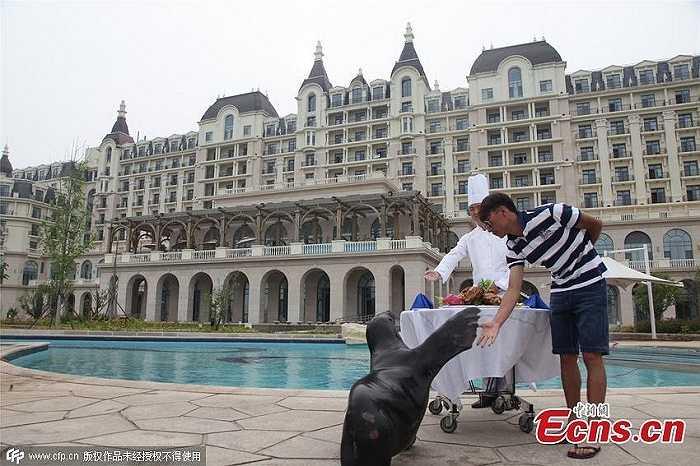 Thiếu gia và con hải cẩu cưng đang vui đùa bên bể bơi ngoài trời của một khách sạn cao cấp ở thành phố Thanh Đảo, tỉnh Sơn Đông, Trung Quốc.