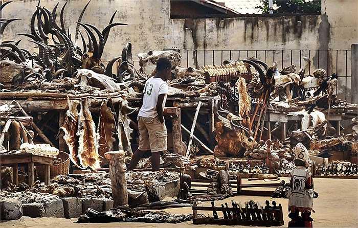 Khu chợ này là đầu mối tiêu thụ sản phẩm của các thợ săn trong vùng và là mối nguy của nhiều động vật quý hiếm.