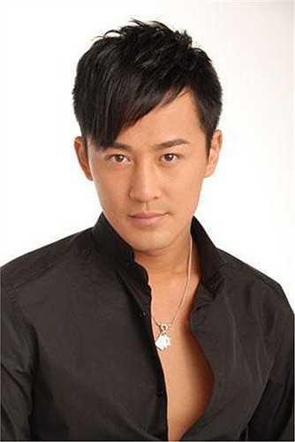 Nổi lên từ cuối những năm 90, Lâm Phong là một trong số các diễn viên có sức hấp dẫn riêng biệt với fan nữ. Gần đây, anh đã chuyển sang Đại lục đóng phim và đạt được một số thành công nhất định.