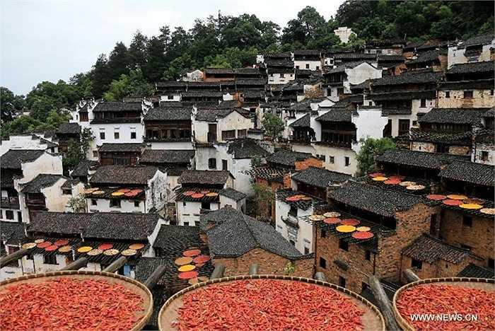 Những nong ớt đầy màu sắc được phơi trong làng
