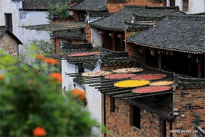 Đây là một phương pháp bảo quản để tích trữ thực phẩm trước mùa mưa