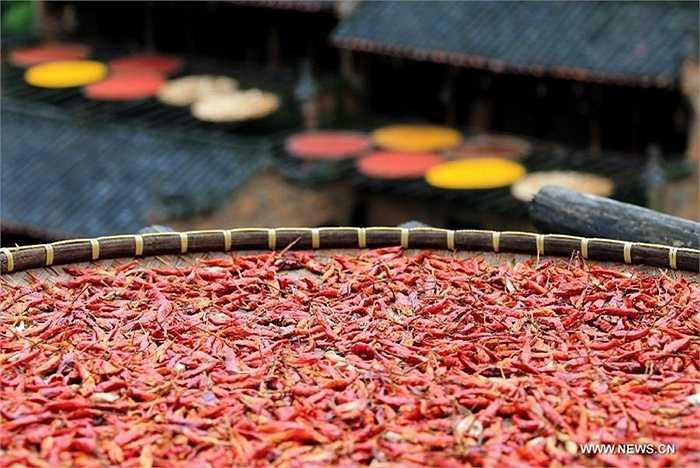 Những quả ớt khô có thể dễ dàng bảo quản, tích trữ mà không sợ bị hỏng