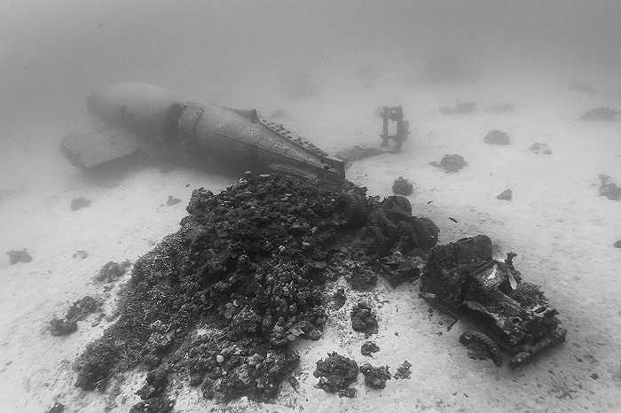 Mueller chia sẻ được nhìn thấy những chiếc máy bay dưới đáy biển là điều thú vị