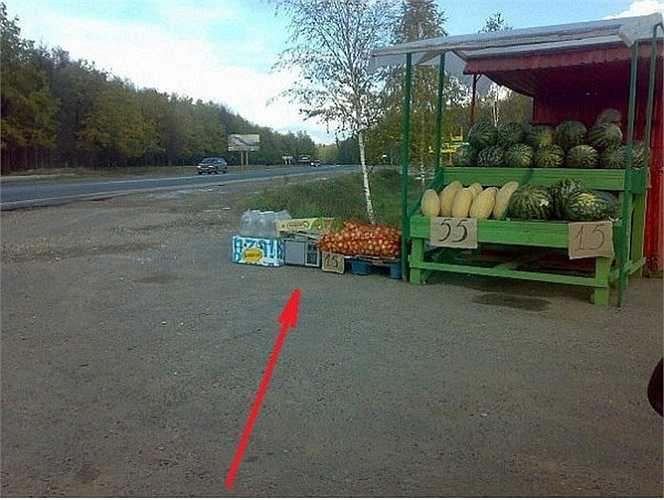 Tại cửa hàng bán hoa quả này, trong những sọt đựng cam (điểm mũi tên) là một máy camera bắn tốc độ. Nó sẽ tự động chụp ảnh và gửi dữ liệu vào laptop của chiếc xe cảnh sát tuần tra đậu phía trên đó vài dặm đường.