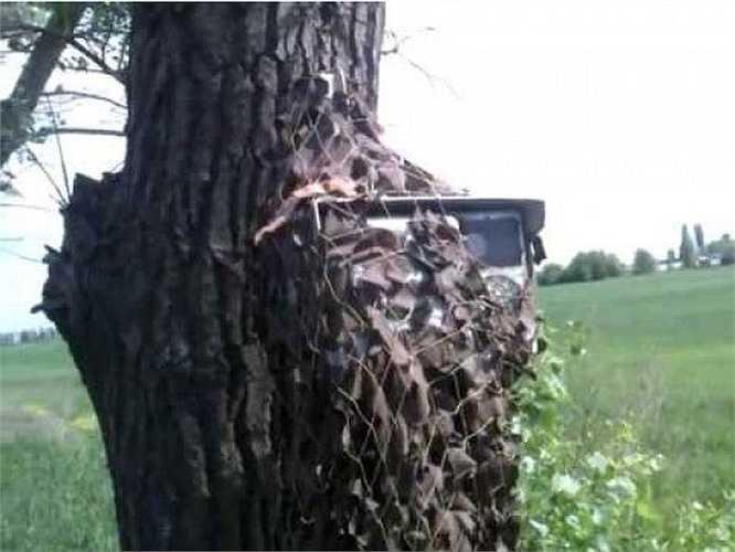 Một thân một cây lớn xù xì cũng 'ngự' một máy bắn tốc độ được ngụy trang cẩn thận. Người vi phạm chịu cứng vì máy bắn tự động, ít khi 'bắn' nhầm.