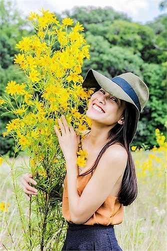 Dương Mỹ Linh sinh năm 1984 tại Bến Tre, là con gái cưng duy nhất của gia đình. Tháng 12/2006, vượt qua 700 thí sinh trong cuộc thi người đẹp qua ảnh do báo Phụ nữ Việt Nam và tạp chí thế giới Phụ nữ tổ chức, Dương Mỹ Linh là thí sinh được khán giả bình chọn nhiều nhất và chính thức đăng quang danh hiệu Hoa hậu trong cuộc thi này.