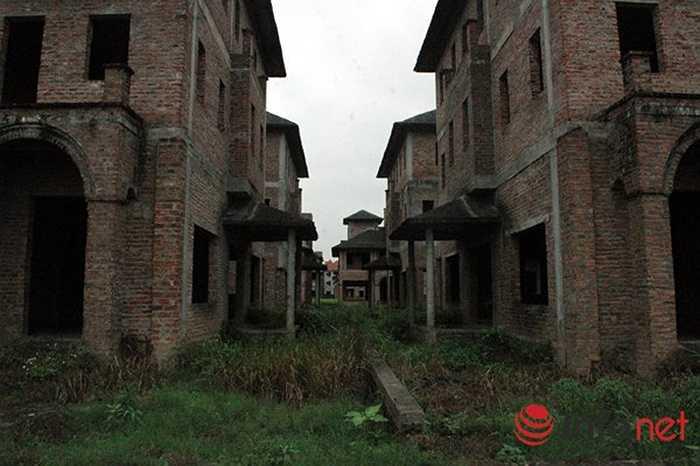 Cỏ mọc ùm tùm giữ hành lang các ngôi biệt thự.