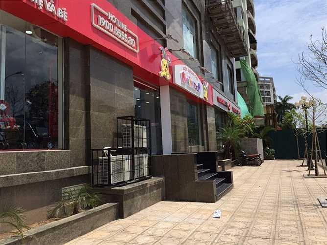 Chung cư D11 Trần Thái Tông được UBND thành phố Hà Nội phê duyệt hồi năm 2004. Theo thiết kế, Công ty CPXD số 3 Hà Nội đã triển khai xây dựng một tòa nhà cao tầng tại lô đất gồm 13 tầng và 1 tum dành làm phòng sinh hoạt cộng đồng. Tháng 8/2008, công trình được hoàn thành và bàn giao cho các gia đình theo hợp đồng đã ký kết.