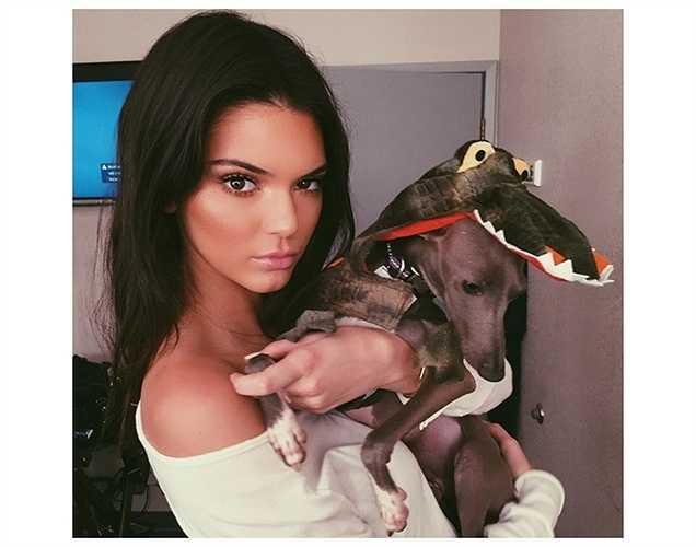 Siêu mẫu Kendal Jenner mặc áo cá sấu cho chú cún.