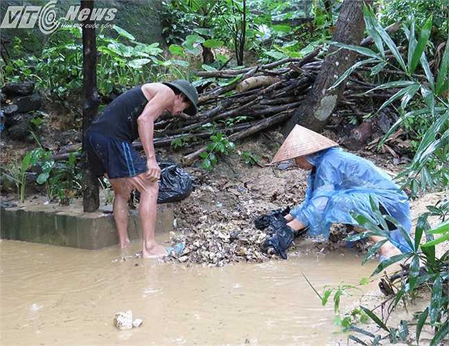Đôi vợ chồng già vẫn còng lưng dưới trời mưa tầm tã khơi thông dòng chảy trong ngõ tránh ngập úng.