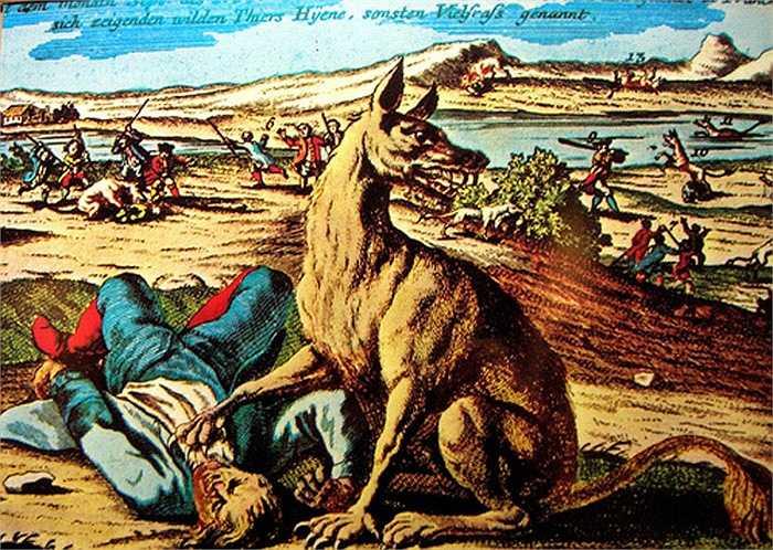 Chỉ trong vòng 3 năm chúng đã xé xác hơn 200 người. Thời kỳ đó, Gevaudan đã gieo rắc nỗi kinh hoàng, ám ảnh cho tất cả dân chúng Pháp, đặc biệt là với người nông dân miền trung.