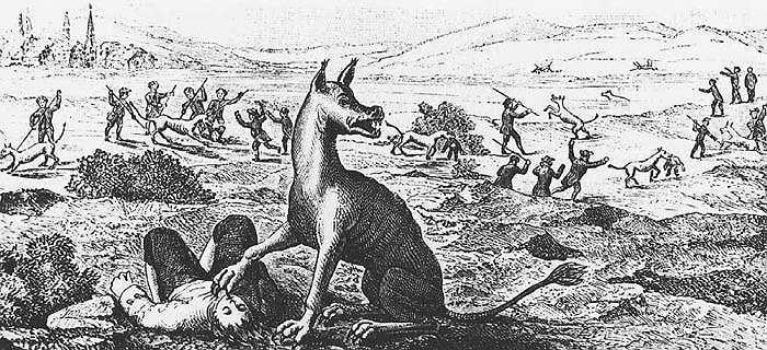Con vật đó được chính ông chủ của nó – một kẻ bệnh hoạn, một tên có sở thích giết người hàng loạt huấn luyện nhằm giết người.