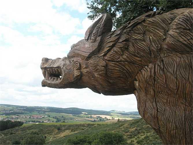 Tuy nhiên, lý thuyết được nhiều nhà nghiên cứu đồng thuận cho rằng, vào đầu thế kỉ 18, trên lãnh thổ nước Pháp có rất nhiều chó sói. Số lượng lên tới trên 10.000 con.