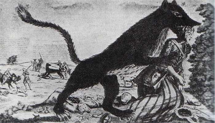 Quái thú Gauvedan được gọi theo tiếng Pháp, được mô tả có hình dáng lai giữa chó nhà và loài sói, chuyên ăn thịt người. Gevaudan có răng và nanh rất to và đuôi dài hơn đuôi chó sói thường rất nhiều.