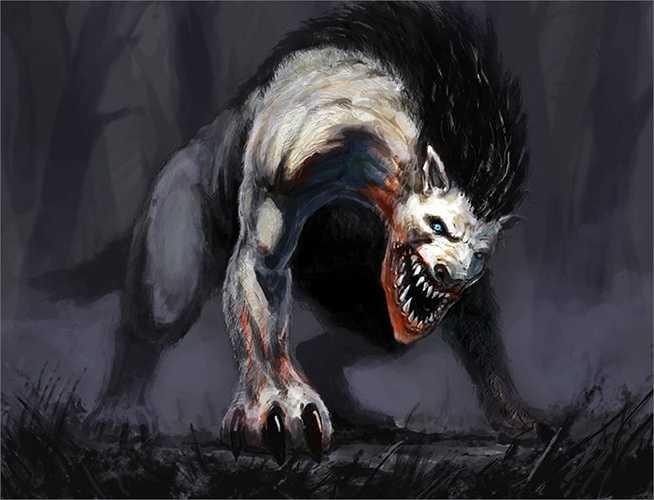 Người dân thời đó cho rằng chúng còn kinh khủng hơn cả loài sói, chúng là ma quỷ siêu nhiên chuyên săn người.