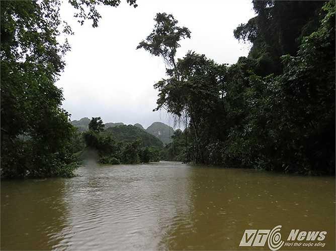 Con đường vào xã giờ đang mênh mông nước. Nhiều đoạn phải chèo thuyền luồn lách qua rừng cây ngập nước mới có thể di chuyển được vào trung tâm xã.