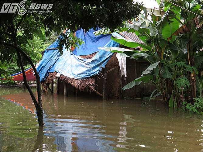 Ngôi nhà tranh vách đất của bà Phạm Thị Hoát, thôn 2, xã Việt Hải sau trận lụt lịch sử này có nguy cơ xóa sổ.