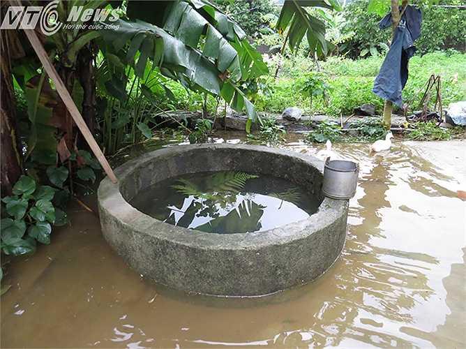 Những chiếc giếng khơi nơi xã đảo này giờ đã ngập chìm trong nước. Sau đợt mưa ngập, việc xử lý ô nhiễm nguồn nước đang là nỗi lo của hàng chục hộ dân.