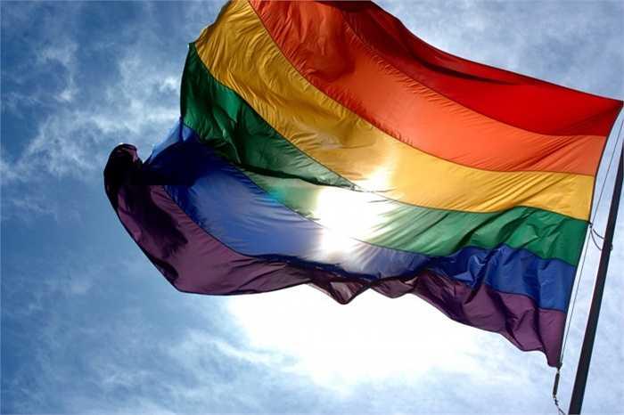Slovenia. Một trong những tín hiệu khả quan nhất với giới LBGT tại Slovenia là Chính phủ của họ đã lên tiếng xác nhận sẽ đồng ý với một số điều khoản trong dự thảo Luật hôn nhân đồng giới hồi cuối năm ngoái. Tuy nhiên, đến giờ, họ vẫn phải chờ thông tin tiếp theo