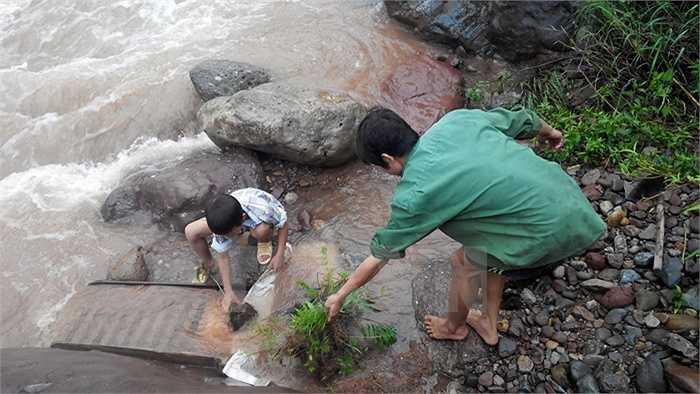 Bất chấp nguy hiểm người dân Lai Châu vẫn ra suối đãi vàng (Ảnh: Nguyễn Công Hải)