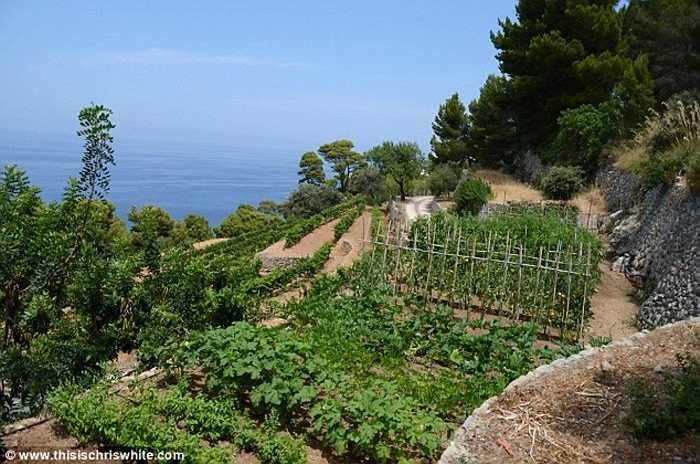 Vườn rau của Michael Doughlas
