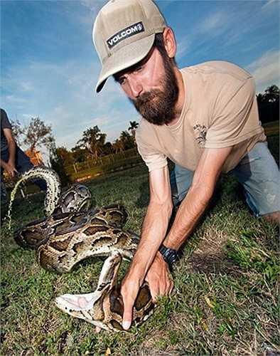 Một thành viên của nhóm nghiên cứu đang giữ đầu con vật khổng lồ để đo chiều dài của nó.