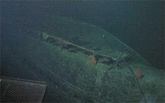 Năm 1968, tàu ngầm của bốn quốc gia Nga, Israel, Pháp và Hoa Kỳ đã mất tích bí ẩn, đến nay vẫn chưa tìm ra nguyên nhân
