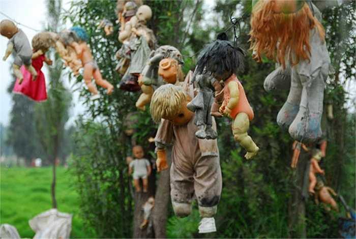 Những con búp bê trên đảo được đưa về từ quá trình sưu tập, tìm kiếm của ông Julian