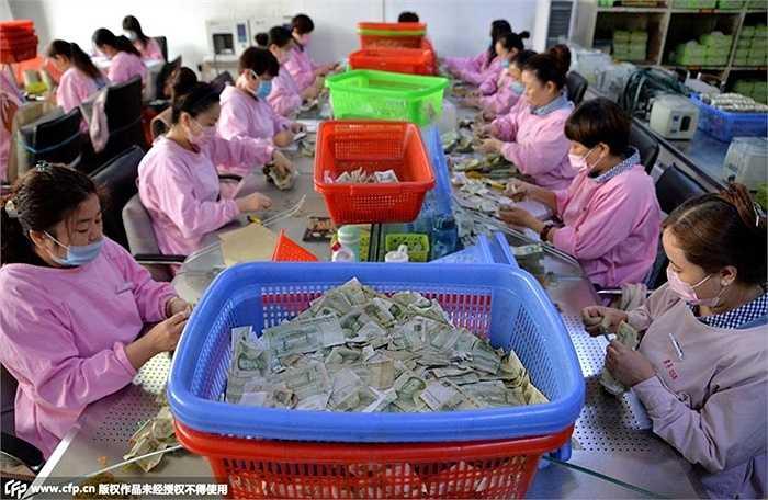 Với số lượng hành khách đông đảo mỗi ngày, công ty vận tải hành khách Hà Bắc (Trung Quốc) phải kiểm đếm một số lượng tiền không hề nhỏ