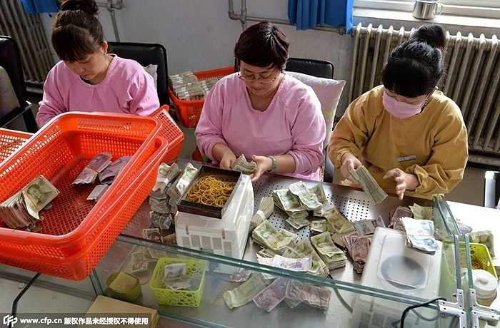 Các nhân viên ngồi cần mẫn đếm, phân loại các tờ tiền được từng xe nộp về trụ sở chính.