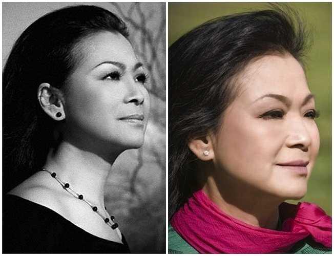 Là một trong những ca sỹ hoạt động ở hải ngoại thế hệ đầu tiên, Khánh Ly được coi là giọng ca tiêu biểu nhất của tân nhạc Việt Nam.