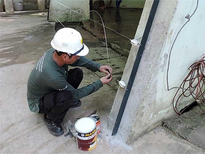 'Các rào điện này sử dụng dòng điện 6,4 – 8,4 KW, khi tiếp xúc với người hoặc vật sẽ đẩy người hoặc vật ra chứ không hút vào, đây cũng là hệ thống được nhiều vườn thú trên thế giới sử dụng', đại diện Tổ chức Động vật Châu Á cho hay.
