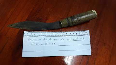 Con dao tang vật mà bà Vân dùng gây án với bé Phát - Ảnh: Thúy Hằng